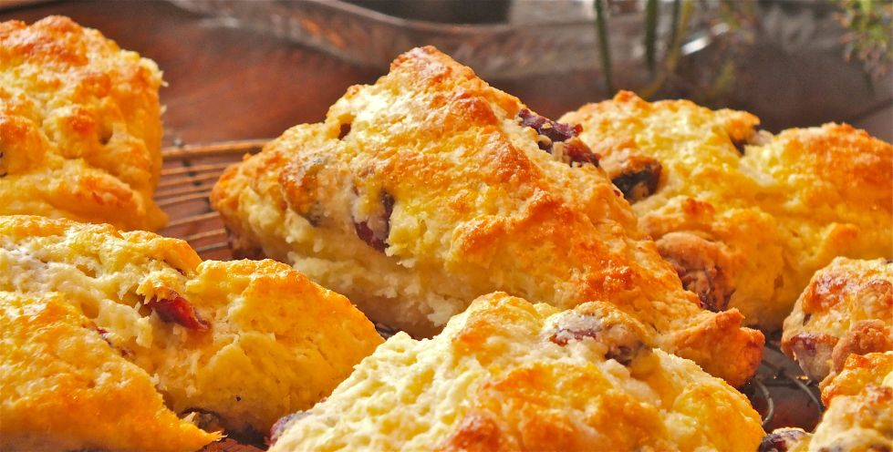 Dried Cranberry -Buttermilk scones hot out of the oven.